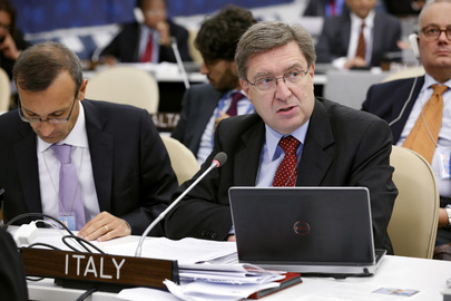 Italian Labour Minister Addresses High-level Meeting on Disability and Development