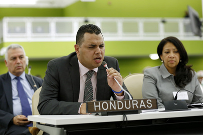 Honduran Disability Affairs Minister Addresses High-level Meeting on Disability and Development