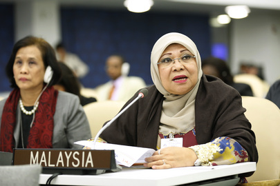 Malaysian Women's Minister Addresses High-level Meeting on Disability and Development
