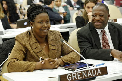 Social Development Minister of Grenada Attends High-level Meeting on Disability and Development