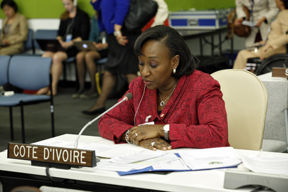 Health Minister of Côte d'Ivoire Addresses High-level Meeting on Disability and Development