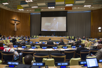 "General Assembly President Speaks on ""MDG Success"""