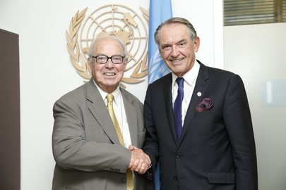 Deputy Secretary-General Meets Director General Emeritus of IAEA