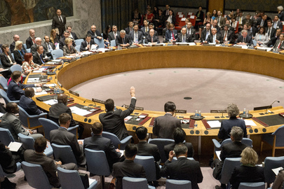 Security Council Adopts Resolution on Small Arms