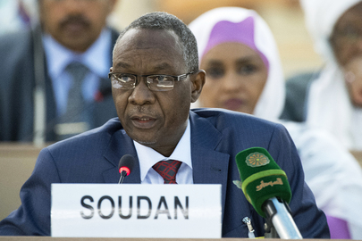 Human Rights Council Discusses Sudan