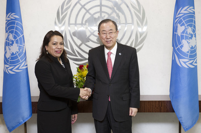 Secretary-General Meets Foreign Minister of Guyana