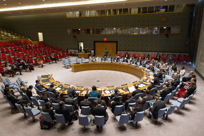 Security Council Issues Statement on Humanitarian Situation in Syria