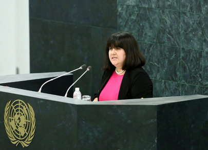 Head of Development Law Organization Addresses High-level Dialogue on Migration and Development
