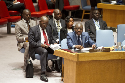 Security Council Discusses Situation in Central African Republic