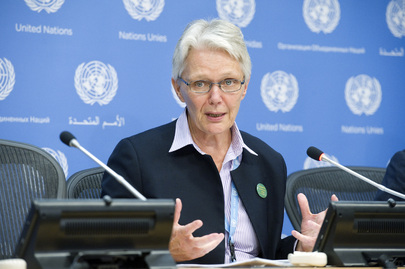 SRSG for Disaster Risk Reduction at Briefs Press