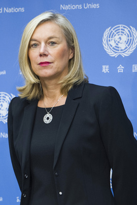 Special Coordinator for OPCW-UN Mission Announced