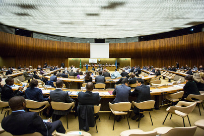 UN in Geneva Marks 50th Anniversary of African Union
