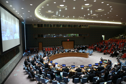Security Council Considers Situation in DRC