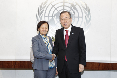 Secretary-General Meets Deputy Special Representative for Somalia