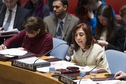 Security Council Meets on Strengthening UN-OIC Partnership
