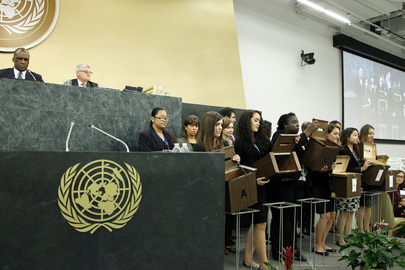 Assembly Elects Members of ECOSOC and Subsidiary Committee