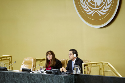 General Assembly Reviews Reports of International Courts