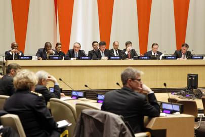 "ECOSOC Special Event: ""Security Sector Reform"""