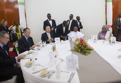 Secretary-General Attends State Luncheon in Niger