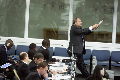 Assembly Debates Security Council Reform