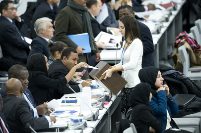 Assembly Elects Fourteen Members of Human Rights Council