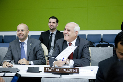 Assembly Elects Yugoslav Tribunal Judge, Palestine Takes Part in Election