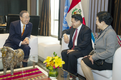 Secretary-General Meets Head of UNIDO