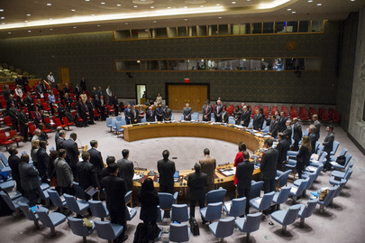 Security Council Honours Nelson Mandela
