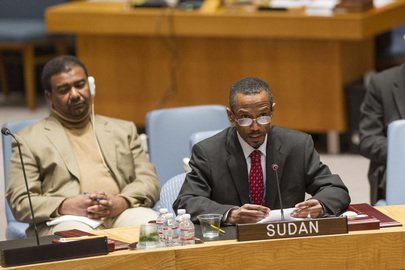 Council Extends Mandate of Sudan Panel of Experts