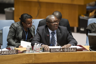 Council Discusses Situation in Guinea-Bissau