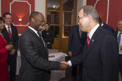 Secretary-General Meets Head of Human Rights Council