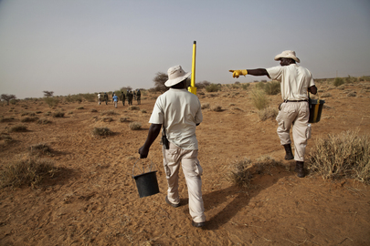 UNMAS Assesses Explosive Threats at Future MINUSMA Camp Site in Gao
