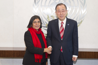 Secretary-General Meets Special Rapporteur on Violence Against Women