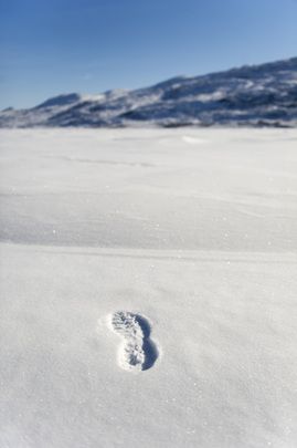 Footprint on Snow Covered Ice, Greenland