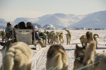 Dog Sledding in Uummannaq, Greenland