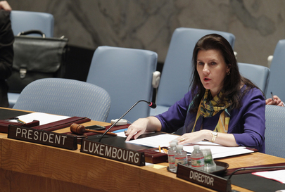 Security Council Discusses Situation in Democratic Republic of Congo