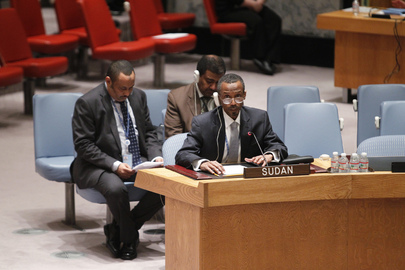 Security Council Unanimously Approves Revision of UNAMID Strategic Priorities