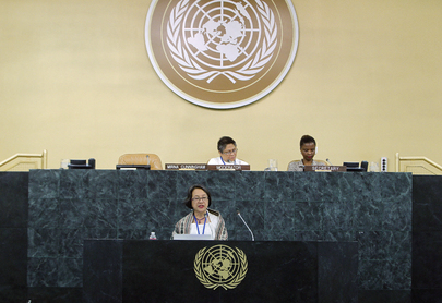 General Assembly Continues Interactive Session on World Conference on Indigenous Peoples
