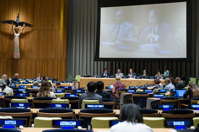 General Assembly Holds High-Level Meeting on Non-Communicable Diseases
