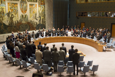 Security Council Observes Minute of Silence for Plane Crash Victims