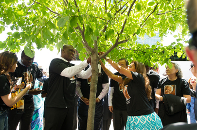 UN Celebrates Nelson Mandela Day, Tends to Newly Planted Trees