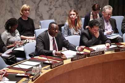 Security Council Urges Humanitarian Ceasefire in Gaza