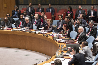 Security Council Fails to Adopt Resolution on Palestinian Statehood