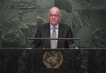 Foreign Minister of Ireland Addresses General Assembly