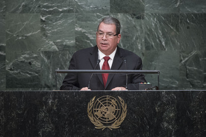 Vice President of Nicaragua Addresses General Assembly