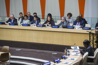 UNODC New York Office Chief Addresses Presentation of Nelson Mandela Rules