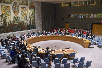 Security Council Adopts Resolution on Youth and Conflict Prevention