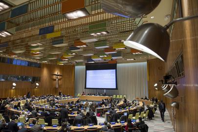 Briefing on Development of Global Indicator Framework on SDG's