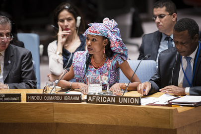 Security Council Discusses Peace and Security Challenges in Sahel Region