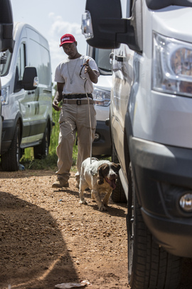 UNMISS Receives 37 Explosive Detecting Dogs